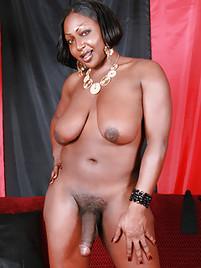 Bbw Ebony Shemale Tgp 13